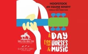 Hoofstock CWHF Equine Benefit